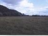 A Farmer's Field in Zurawno, 2003